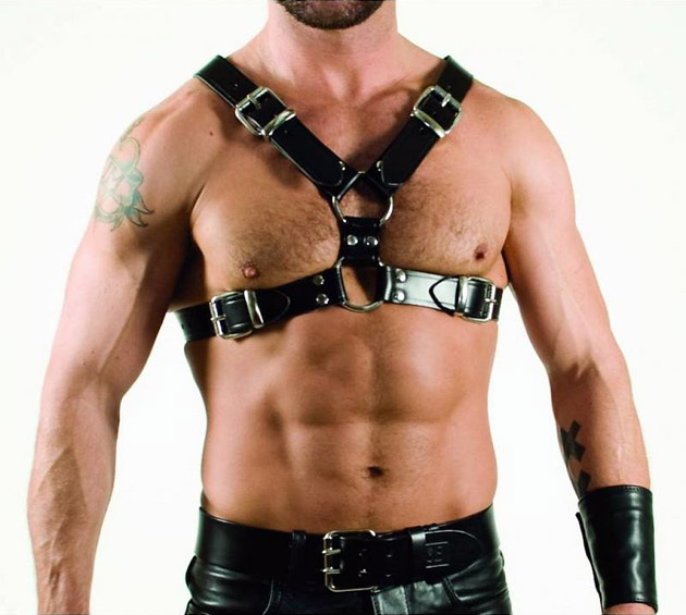rob-y-front-harness